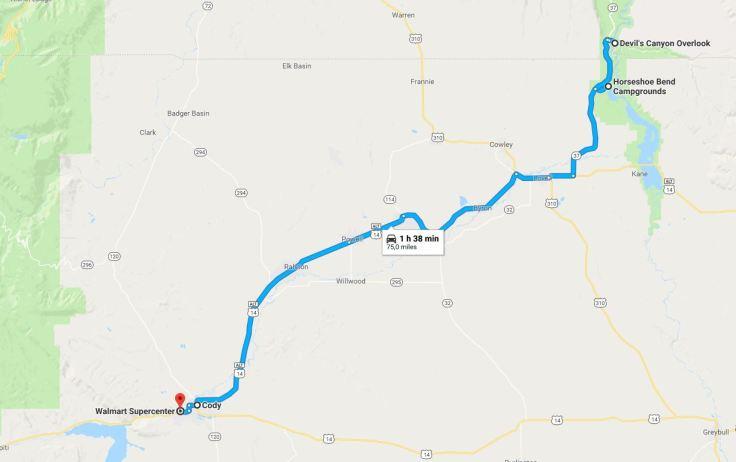 bighorn-cody